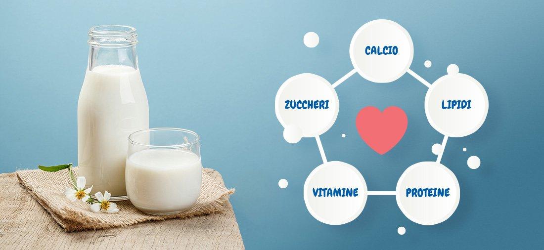 candia-I-nutrienti-del-latte
